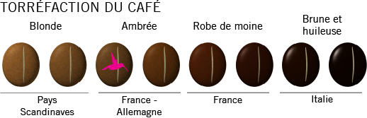 Torréfaction du café arabica Ethiopie Wallaga bio
